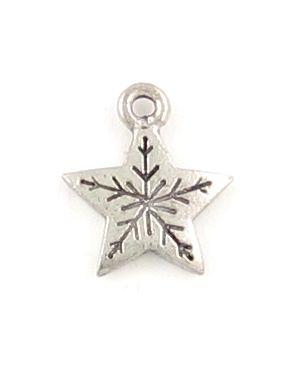 Star Flake (±14x16x2mm; - 1D)
